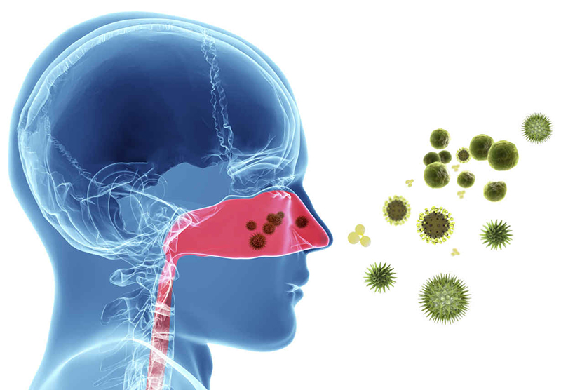 Come capire la differenza tra raffreddore da fieno e raffreddore